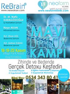 mavi-detox-kamp